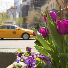 Save 15% Off Your Stay This Spring
